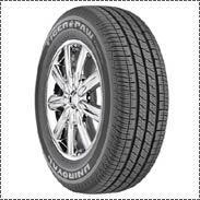 Tiger Paw Touring Tires